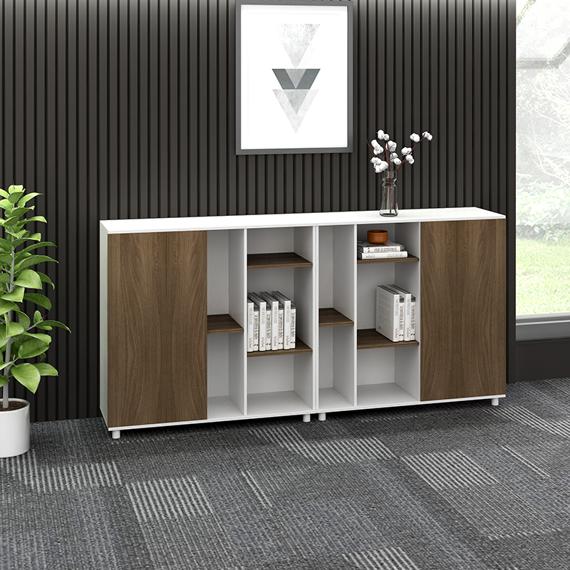 Office Filing Storage cabinet